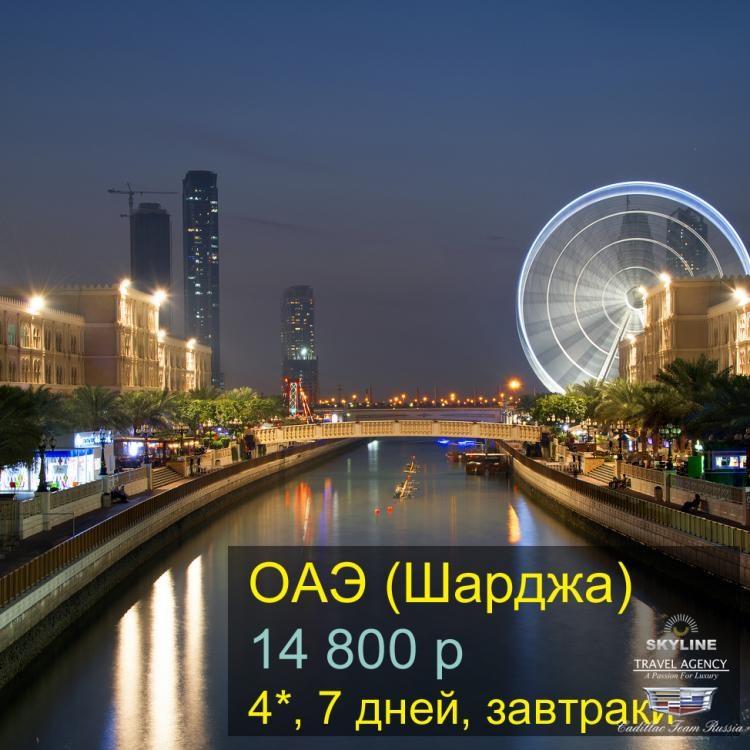 Shardzha_ копия.jpg