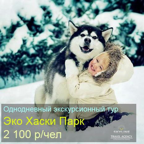 husky_19.jpg